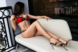 Fayza tantra massage in Evanston WY